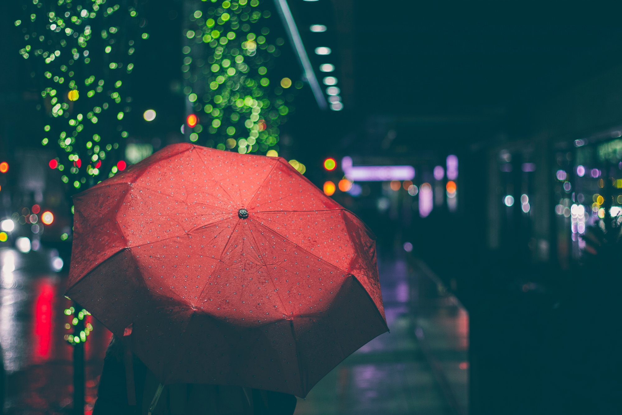 Rain red umbrella night stock photo - Pexels | The Lonely Tribalist