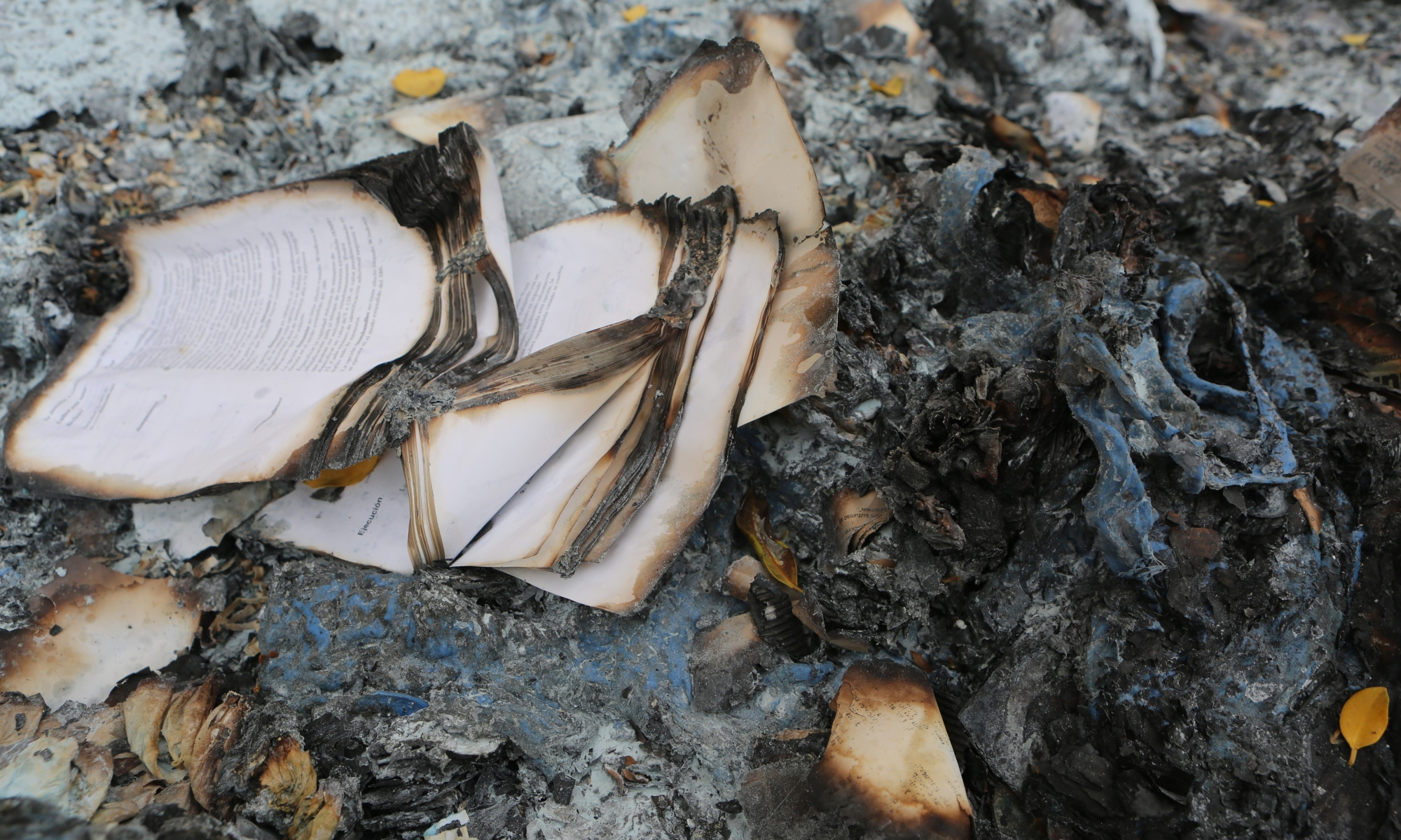 burned book pages | the lonely tribalist