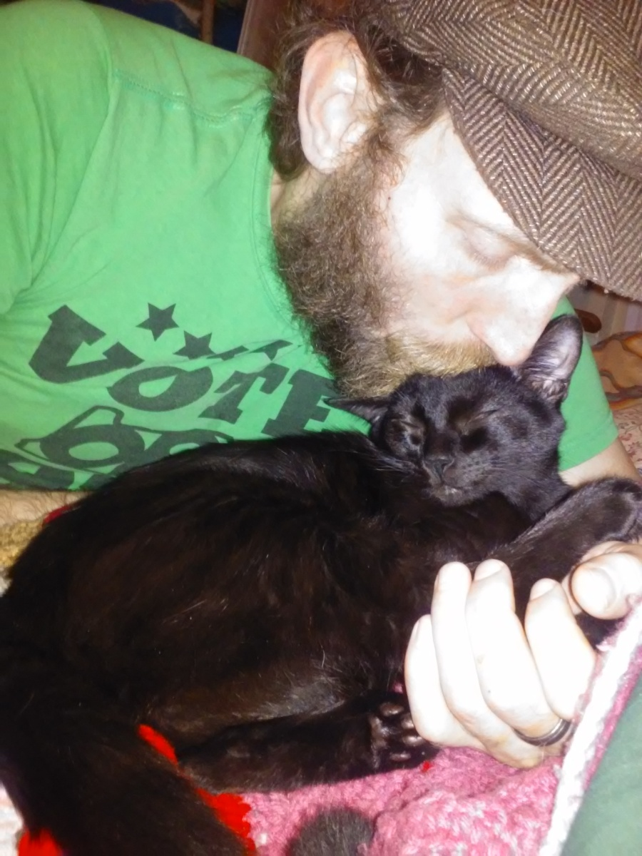 Moose and binx black cat | the lonely tribalist