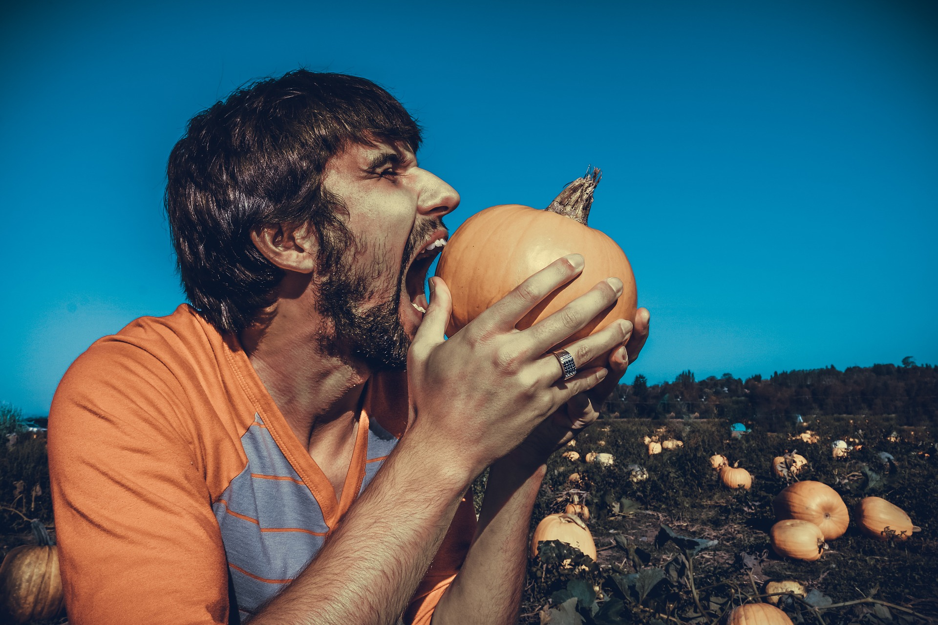 angry hungry hangry man eating pumpkin patch | the lonely tribalist
